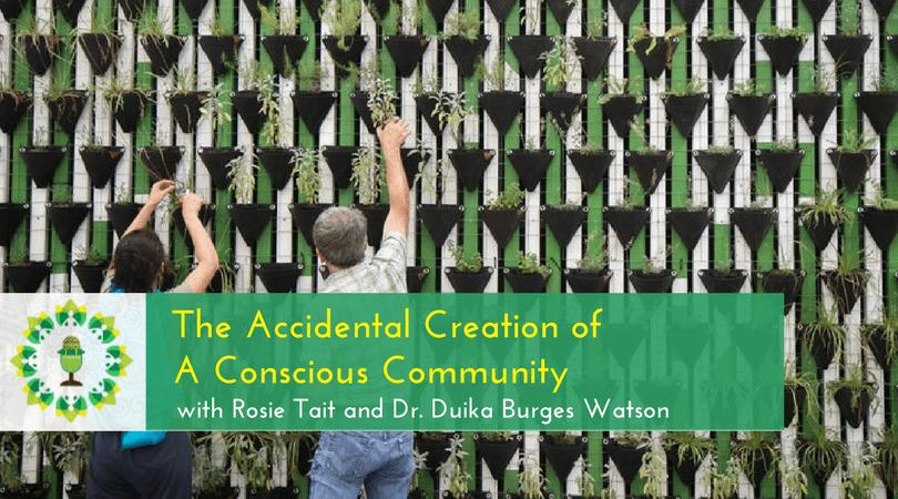 Guerrilla Gardener Goes Legit - The Accidental Creation of A Conscious Community