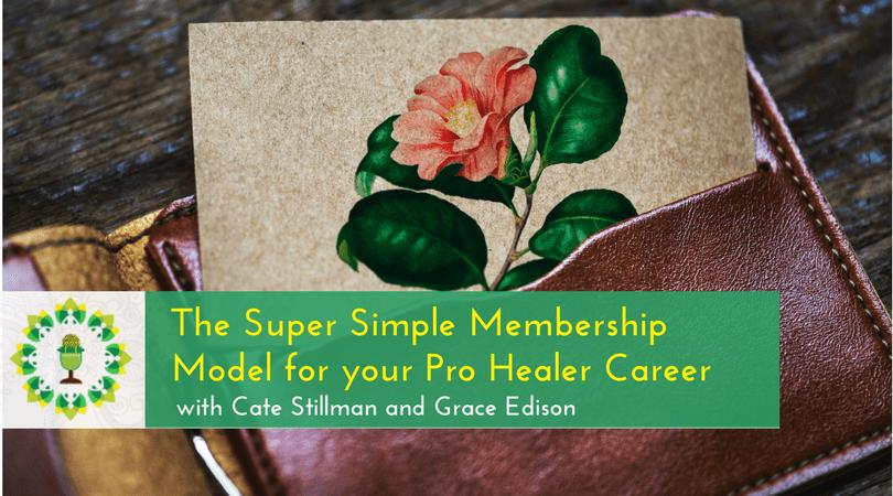 The Super Simple Membership Model for your Pro Healer Career