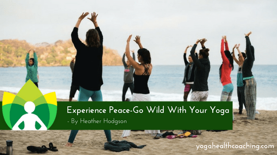 Experience Peace-Go Wild With Your Yoga